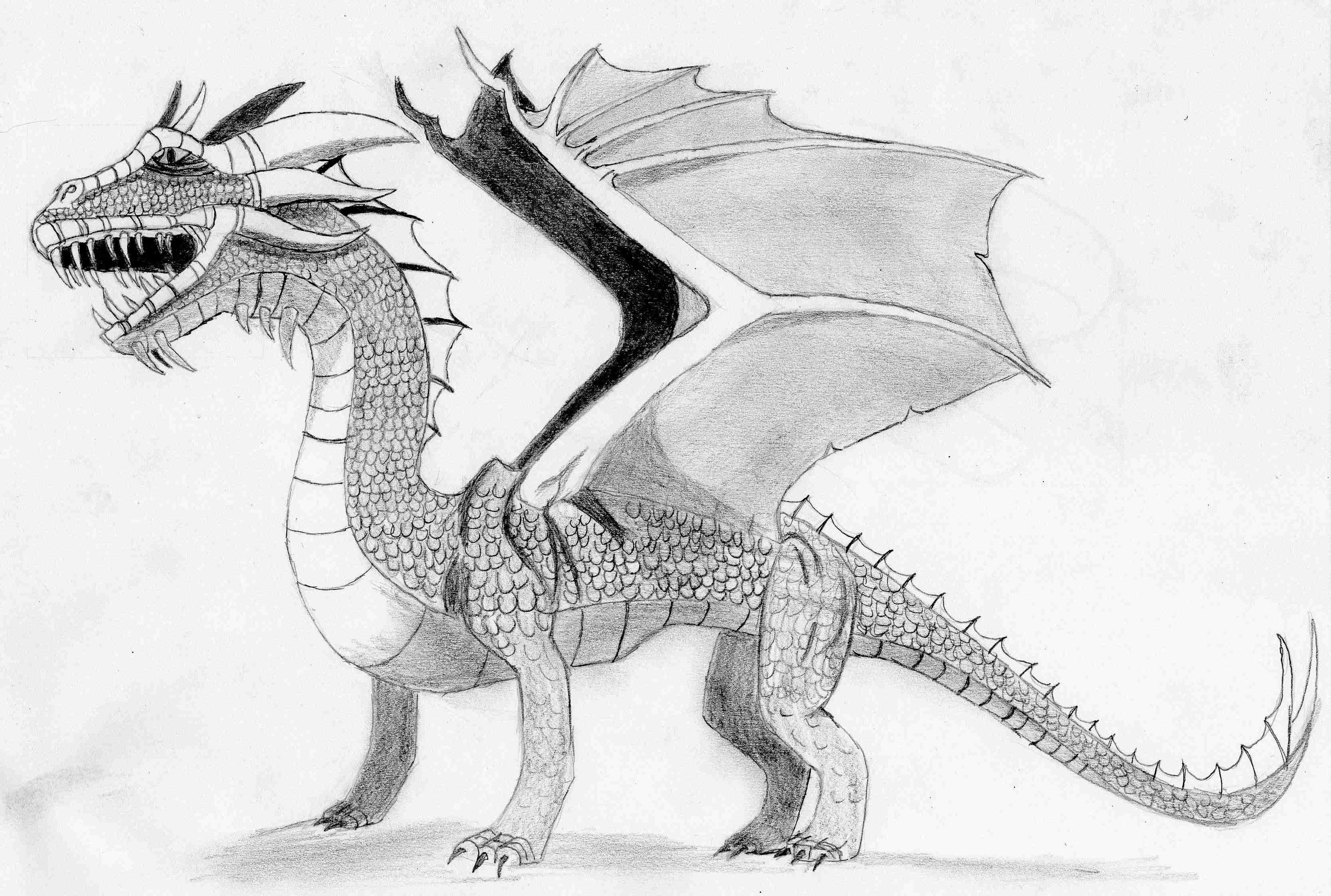 Dragon 1 Valheru S Website