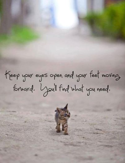 Keep your eyes...